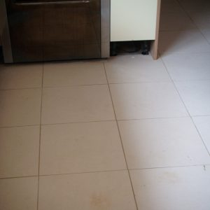 limestone floor cleaning after